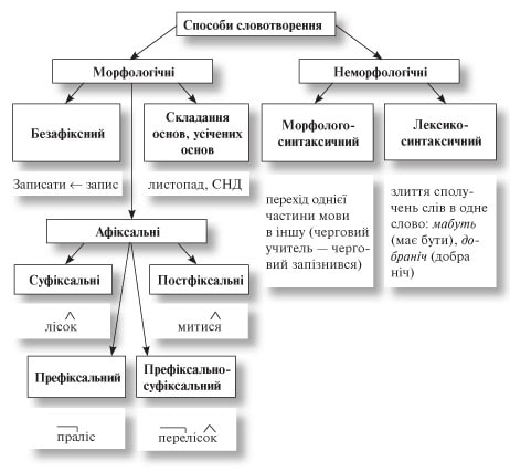 Усі Уроки Біології 6 Клас 2014