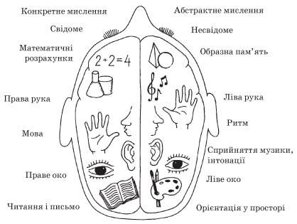 Функціональна асиметрія мозку
